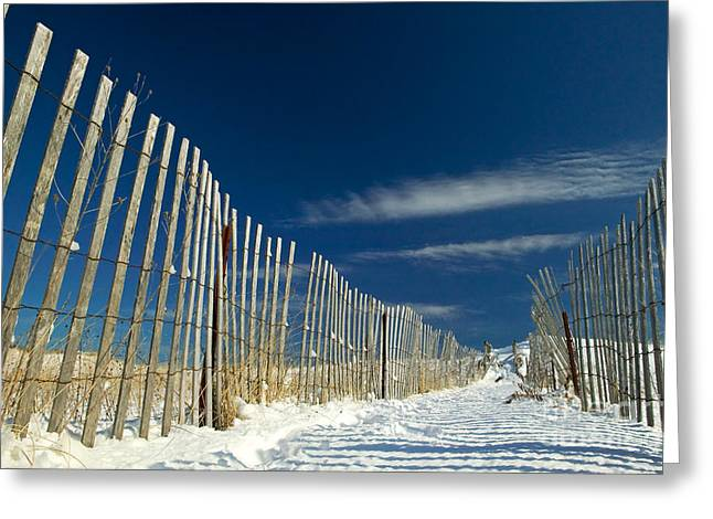 Beach Fence And Snow Greeting Card by Matt Suess