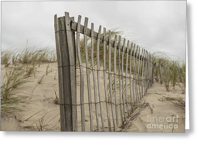 Beach Fence Greeting Card by Juli Scalzi