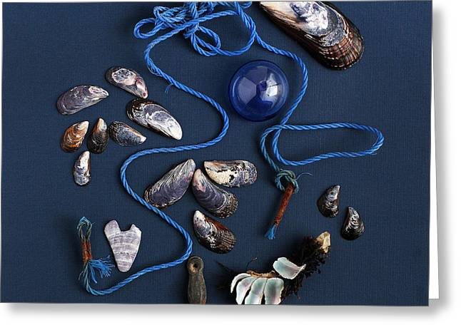 Beach Finds In Blue Greeting Card by Art Block Collections