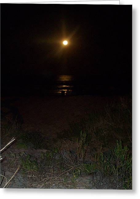 Beach Full Moon Greeting Card by Patricia Taylor