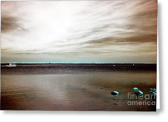 Beach Haven Bay Infrared Greeting Card by John Rizzuto