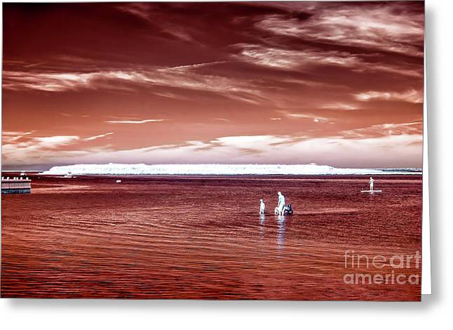 Beach Haven Reds Greeting Card by John Rizzuto