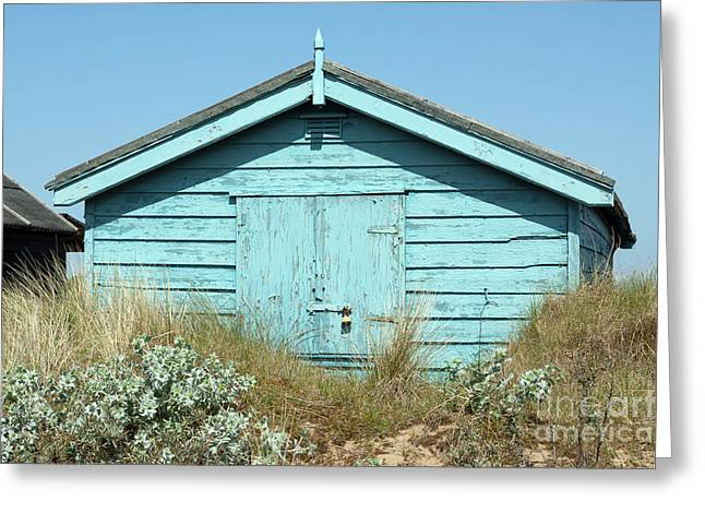 Beach Hut Sea Holly And Marram Grass Greeting Card by John Edwards