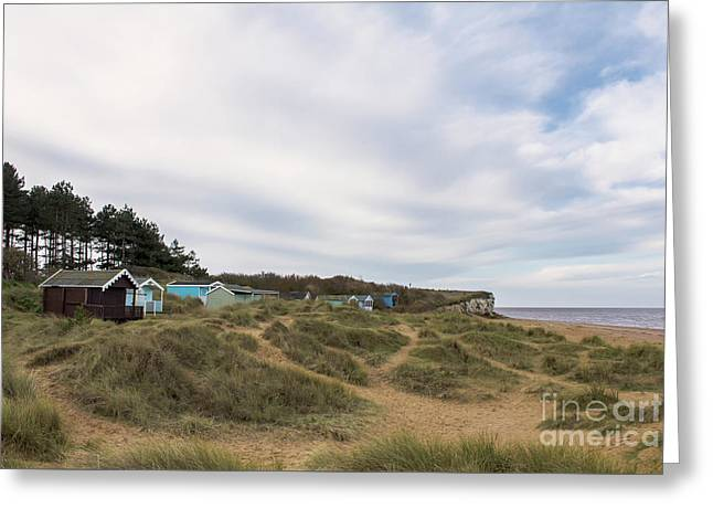 Beach Huts In The Marram Grass Greeting Card by John Edwards
