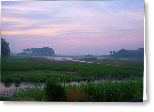 Beach Marsh Sunrise - 14 Greeting Card by Donovan Hubbard
