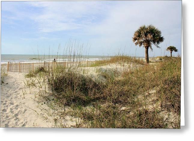 Beach Path Greeting Card by Angela Rath