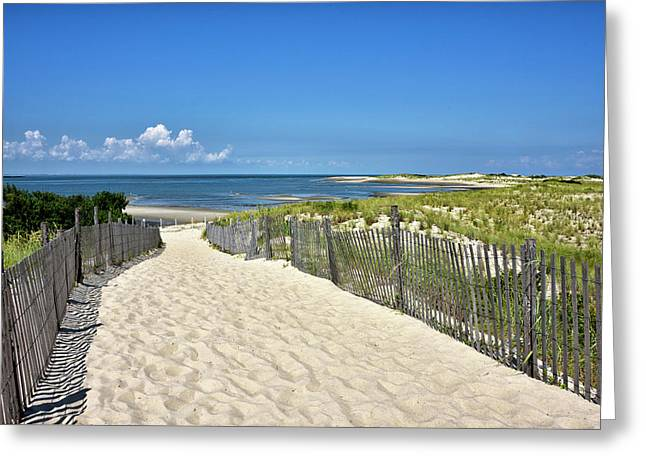 Greeting Card featuring the photograph Beach Path At Cape Henlopen State Park - The Point - Delaware by Brendan Reals