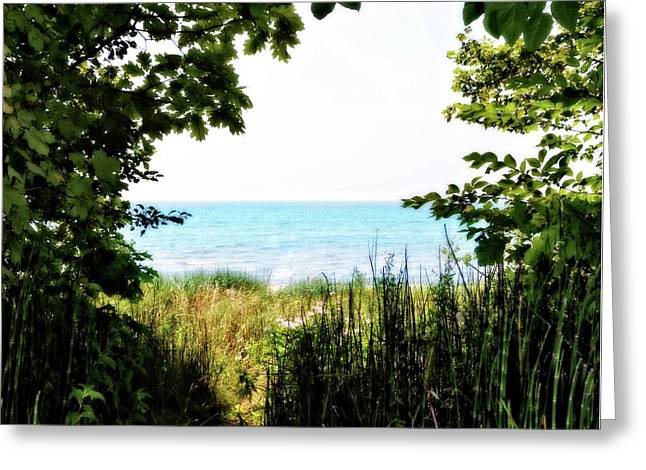 Greeting Card featuring the photograph Beach Path With Snake Grass by Michelle Calkins
