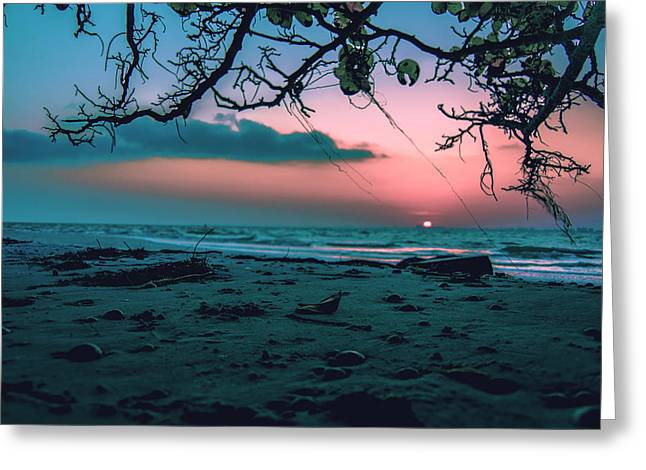 Beach Posted Greeting Card by Michael Frizzell