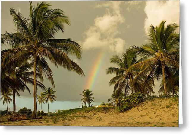 Beach Rainbow Greeting Card by Brad Perkins