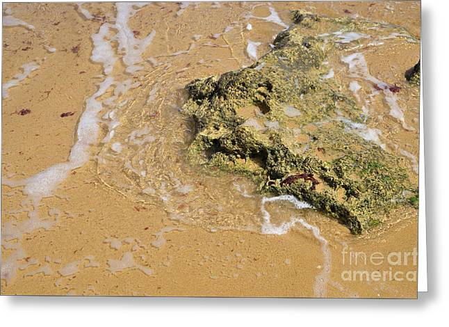 Beach Rock Touched By The Sea Greeting Card
