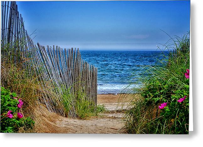 Beach Roses Greeting Card by Tricia Marchlik
