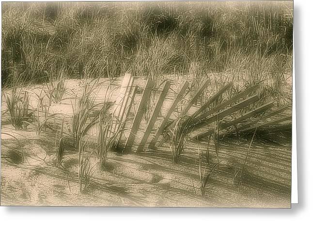 Beach Sand Dune - Jersey Shore Greeting Card