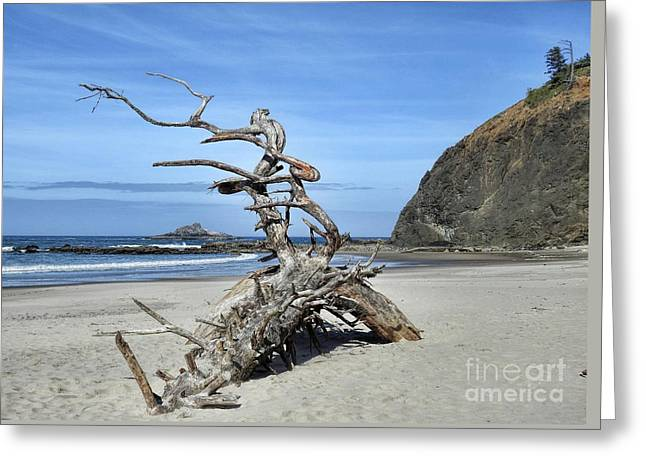 Greeting Card featuring the photograph Beach Sculpture by Peggy Hughes