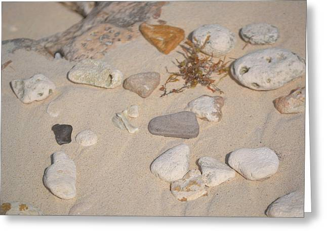 Beach Treasures 2 Greeting Card