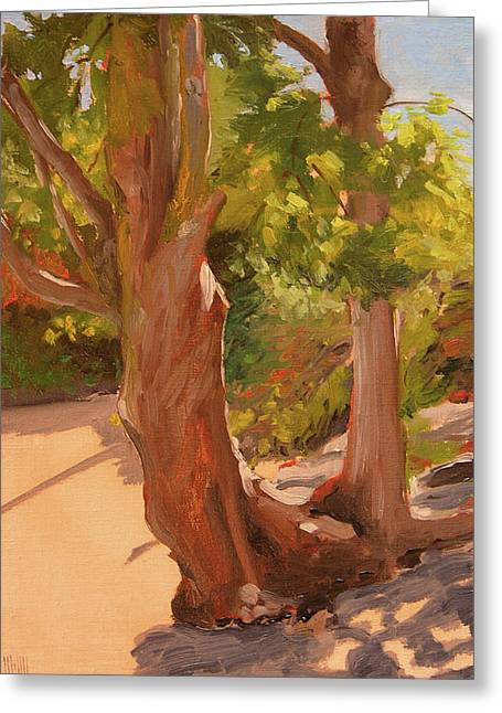 Beach Trees Greeting Card by Mary McInnis