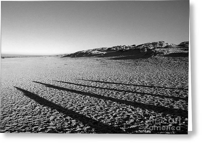 Beach With Shadows Greeting Card by Sascha Meyer