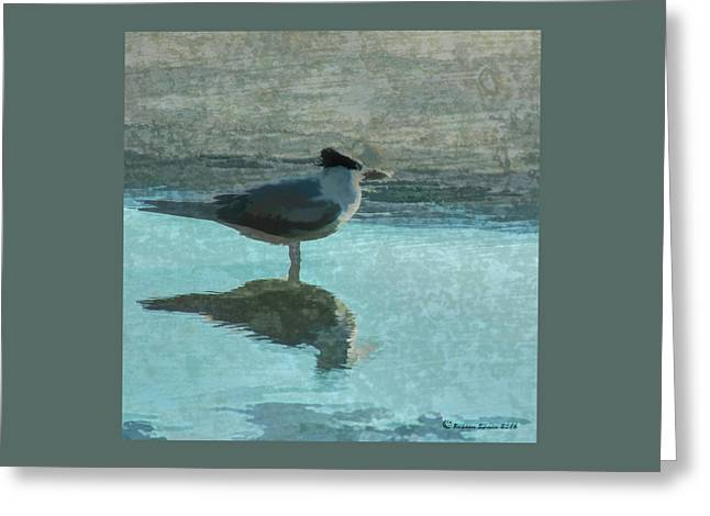 Beachcomber Greeting Card by Marvin Spates
