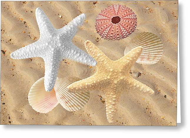 Beachcombing Greeting Card by Gill Billington