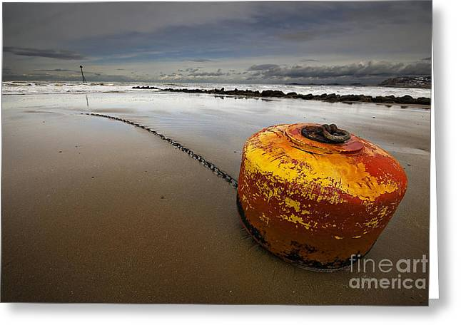 Beached Mooring Buoy Greeting Card by Meirion Matthias