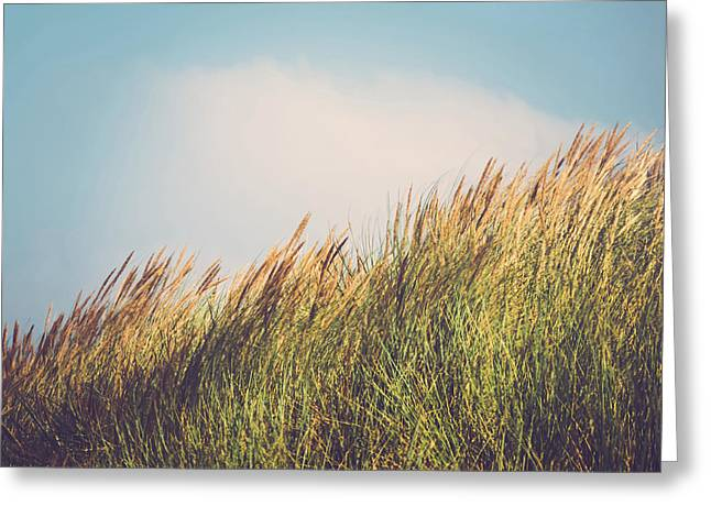 Beachgrass Greeting Card by Wim Lanclus