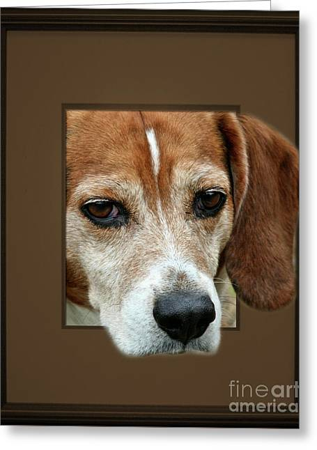 Beagle Peeking Out Greeting Card