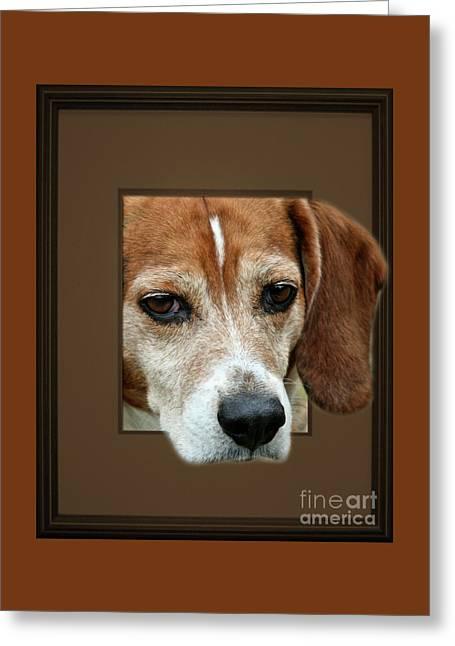 Beagle Peeking Out Greeting Card