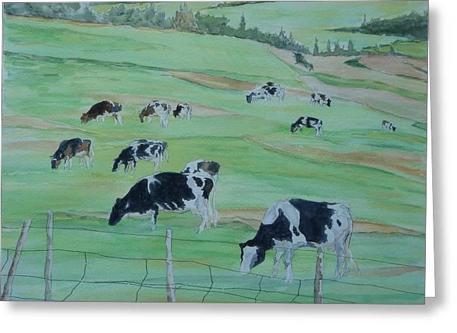 Beanie's Cows Greeting Card by Joel Deutsch