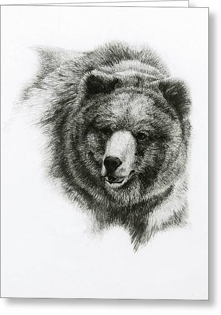 Bear Greeting Card by Heather Theurer