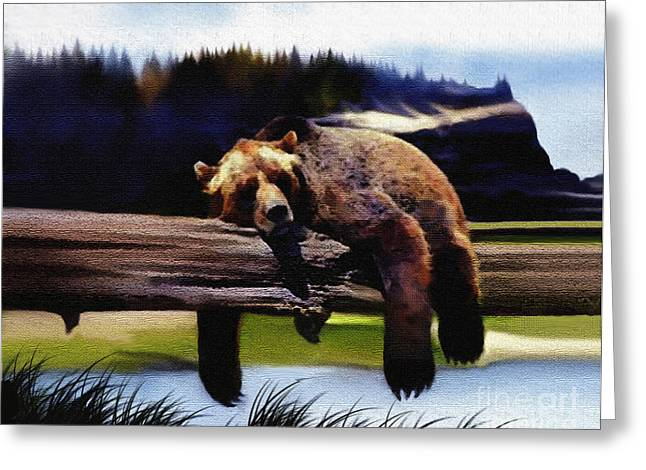 Bear Nap Greeting Card by Robert Foster