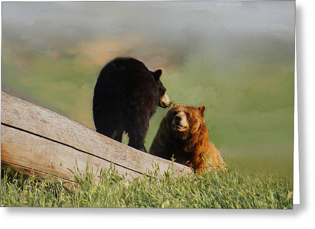 Bears In Conversation Greeting Card by Art Spectrum
