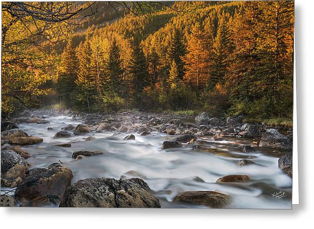 Beartooth Mountains Sunrise Greeting Card by Leland D Howard