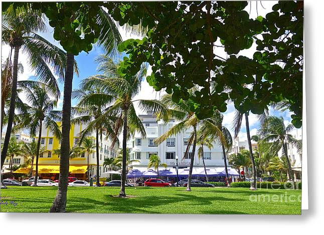 Beat Of Miami Greeting Card by Judy Kay