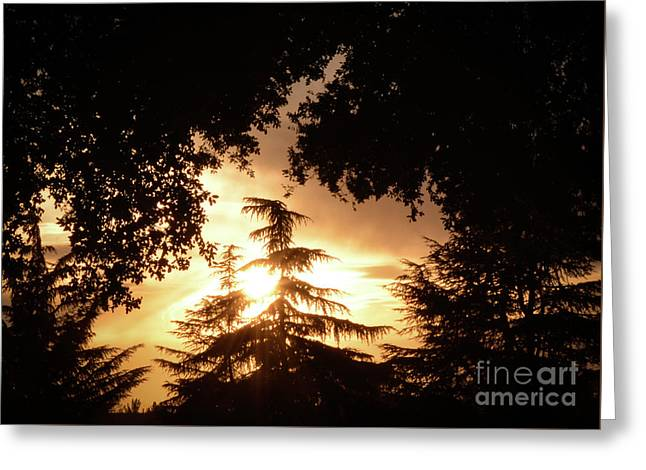 Beaumont Sunset Greeting Card
