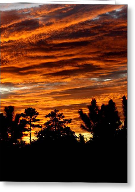 Beautifil Sunset Greeting Card by Dana  Oliver