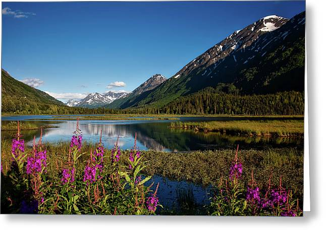 Beautiful Alaska Greeting Card by Mountain Dreams