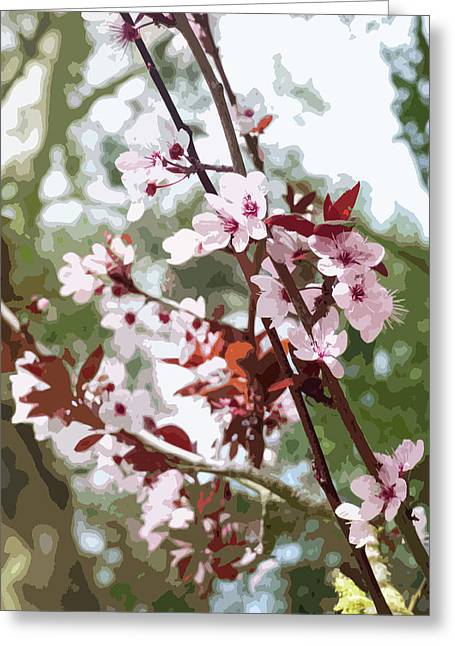 Beautiful Almond Blossoms Greeting Card