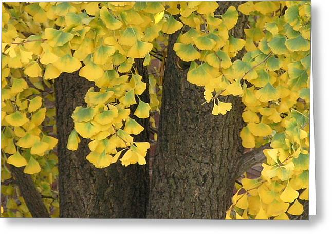 Beautiful Autumn Greeting Card by Anna Folkartanna Maciejewska-Dyba