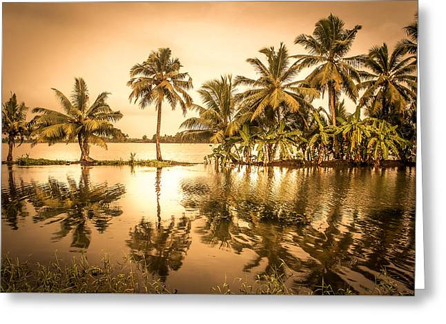 Beautiful Backwater View Of Kerala, India. Greeting Card