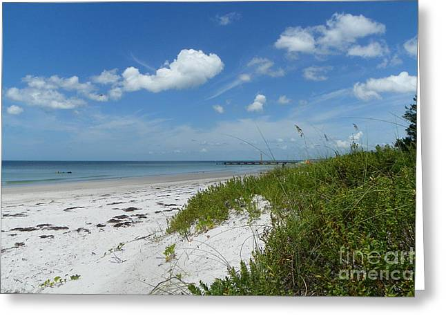 Greeting Card featuring the photograph Beautiful Beach Day by Carol  Bradley