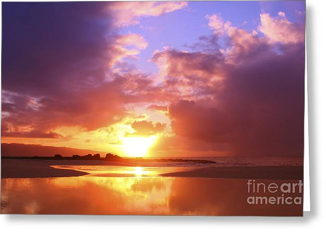 Beautiful Bright Sunset Greeting Card by Vince Cavataio - Printscapes
