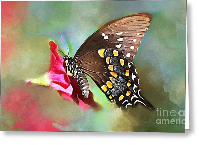 Beautiful Butterfly Greeting Card by Tina LeCour