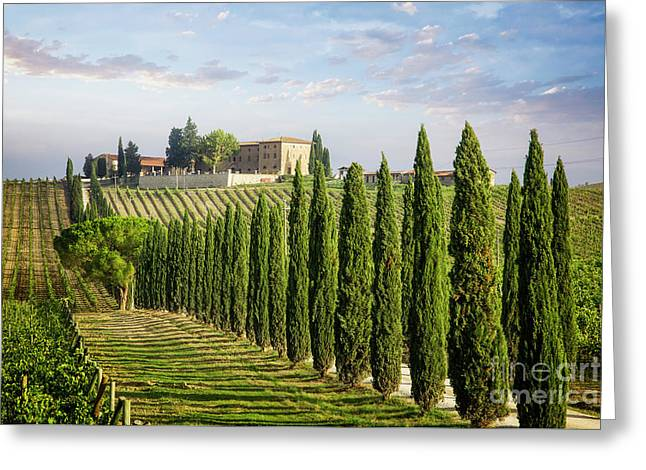 Greeting Card featuring the photograph Beautiful Chianti by Scott Kemper