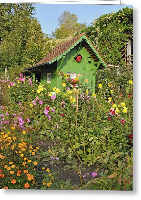 Beautiful Colorful Flower Garden Greeting Card