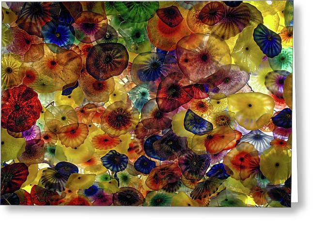 Greeting Card featuring the photograph Beautiful Colors by Michael Colgate