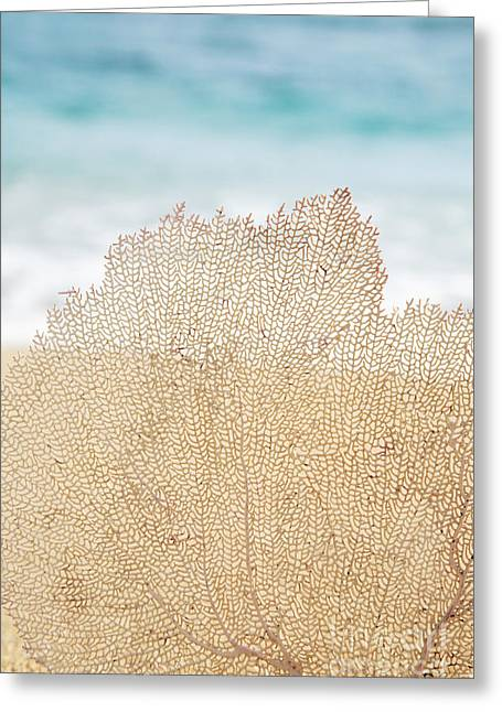 Beautiful Coral Element 2 Greeting Card by Brandon Tabiolo - Printscapes