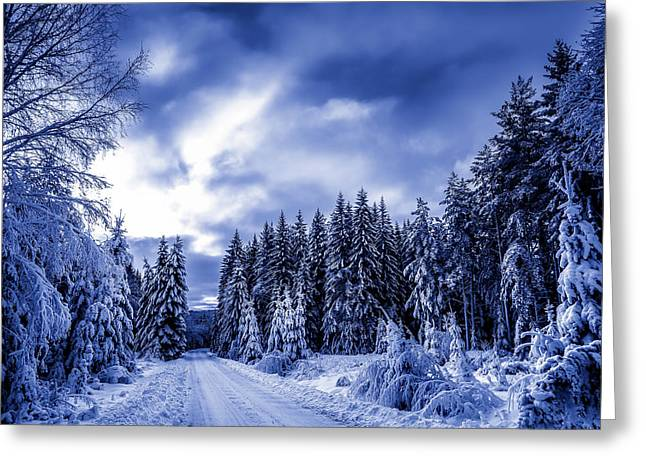 Beautiful End Of A Winter Day Greeting Card