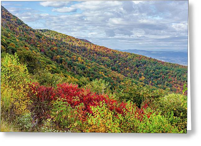 Greeting Card featuring the photograph Beautiful Fall Foliage In The Blue Ridge Mountains by Lori Coleman