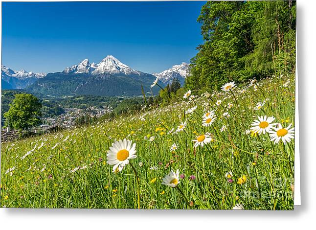 Beautiful Flowers In Striking Mountain Landscape In Spring Greeting Card