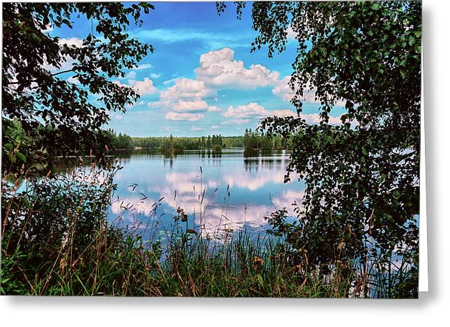 beautiful forest lake in Sunny summer day Greeting Card